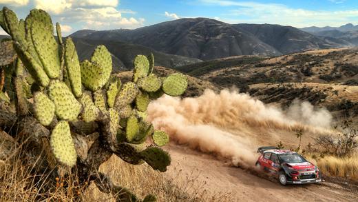 C3 WRC - Rallye Mexico